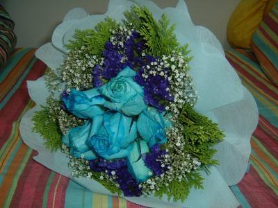 blue-roses2.JPG